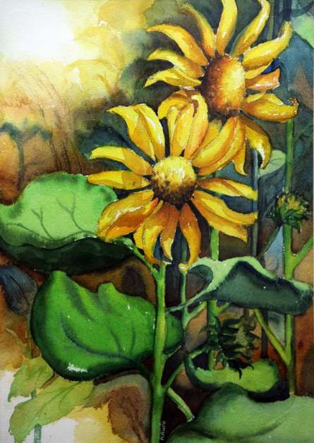 Krupa Shah | Watercolor Painting title Sun Flower II on Paper | Artist Krupa Shah Gallery | ArtZolo.com