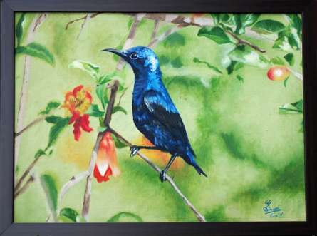 Gaurav Dinesh | Oil Painting title Purple Sunbird On Pomegranate Shrub on Canvas | Artist Gaurav Dinesh Gallery | ArtZolo.com