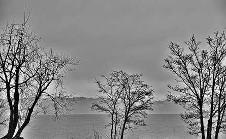 Amriswil Lake 1 | Photography by artist Ashwin Rajaraman | Art print on Canvas