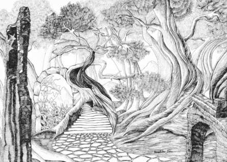 Nature Ink Art Drawing title 'Secret Garden' by artist Ninoshka Dias