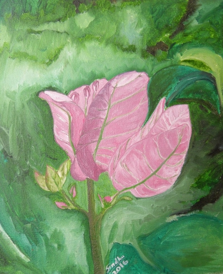Pink Bougainvilla | Painting by artist Sindhulina Chandrasingh | oil | Canvas
