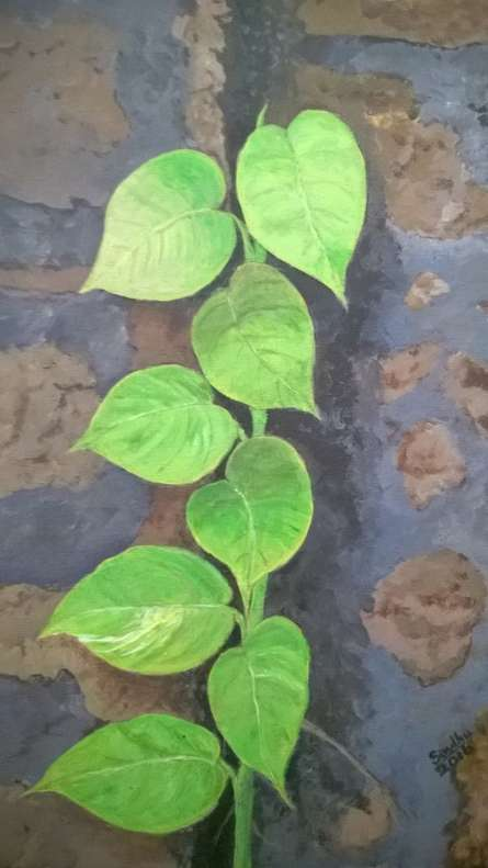 Money plant on the garden wall | Painting by artist Sindhulina Chandrasingh | acrylic | Canvas
