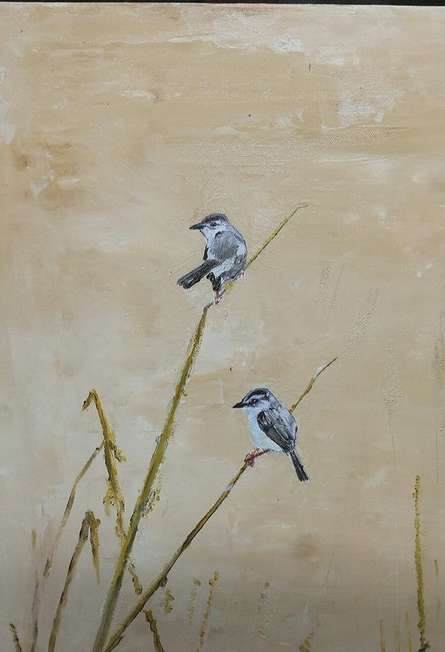 Zitting Cisticolas | Painting by artist Yashodan Heblekar | oil | Canvas Board