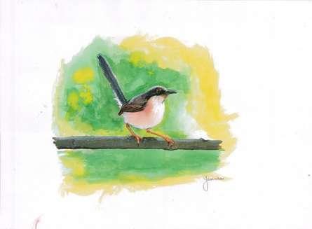 Yashodan Heblekar Paintings | Watercolor Painting - Ashy Prinia by artist Yashodan Heblekar | ArtZolo.com
