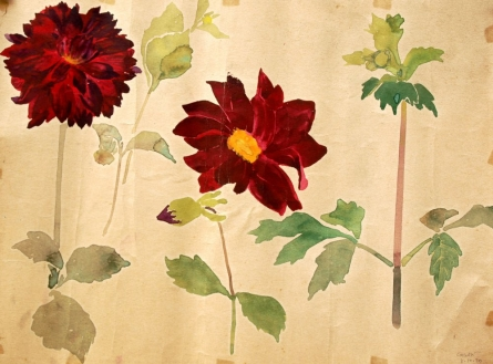 THE CARNATIONS | Drawing by artist Gagan Arora |  | others | Paper