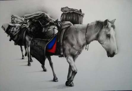 Horse Carrier | Drawing by artist Yuvraj Patil |  | charcoal | Canvas