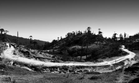 Landscape 35 | Photography by artist Satyaki Biswas | Art print on Canvas
