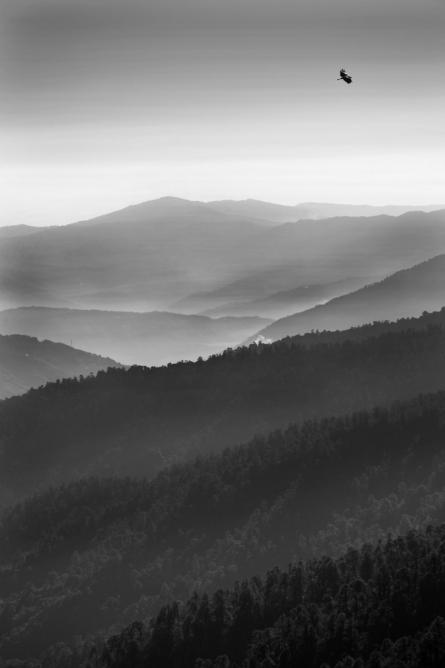 Landscape 38 | Photography by artist Satyaki Biswas | Art print on Canvas