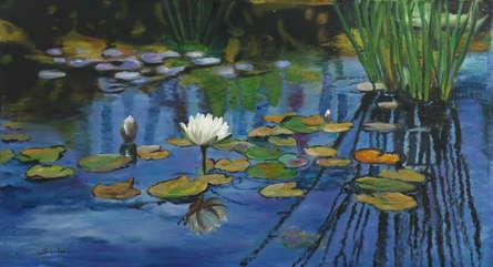 Sulakshana Dharmadhikari Paintings | Oil Painting - Lily-pond 10 by artist Sulakshana Dharmadhikari | ArtZolo.com