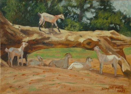 Old Wood   Painting by artist Swapnil Patil   oil   Canvas