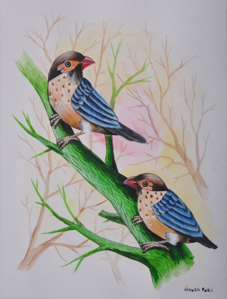 Animals Watercolor Art Painting title 'Birds Painting 24' by artist Santosh Patil