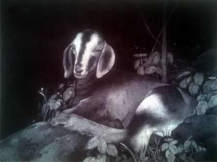 Goat | Drawing by artist Nagesh Devkar | | pen | Canson Paper