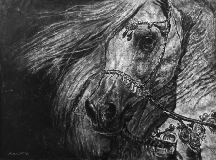 Animals Charcoal Art Painting title 'Arabian Beauty' by artist Anand Sai