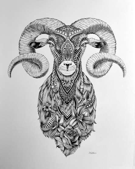 Animals Pen Art Drawing title 'Goat 3' by artist Kushal Kumar