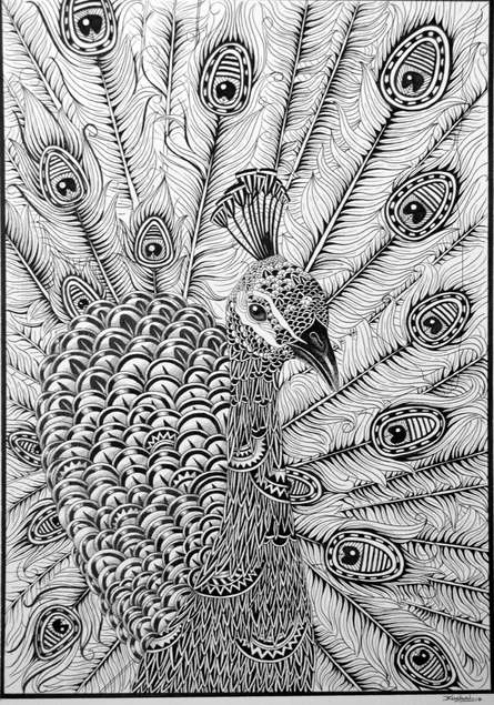 Pen Paintings | Drawing title Peacock on Paper | Artist Kushal Kumar