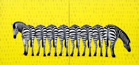 Animals Acrylic Art Painting title Zebra 1 by artist Amit Kumar