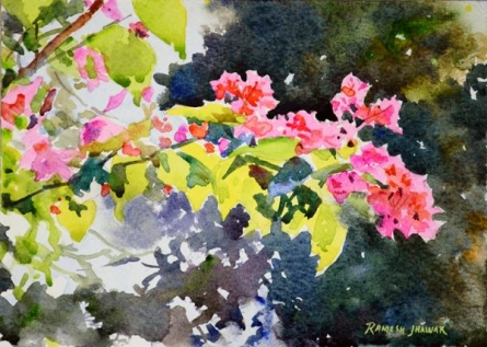 Ramesh Jhawar | Watercolor Painting title Bougainvilleas on Paper | Artist Ramesh Jhawar Gallery | ArtZolo.com
