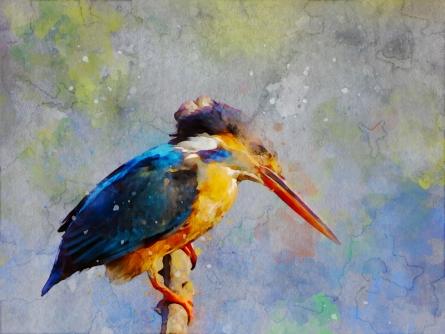 art, digital art, canvas, animal