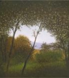 Landscape Oil Art Painting title 'Nature Shade' by artist Fareed Ahmed