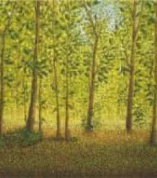 Fareed Ahmed Paintings | Oil Painting - Between The Trees by artist Fareed Ahmed | ArtZolo.com