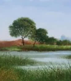 Landscape Oil Art Painting title 'Pond' by artist Fareed Ahmed