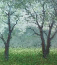 Landscape Oil Art Painting title Babool tree by artist Fareed Ahmed