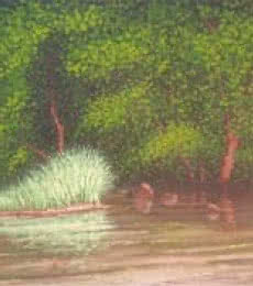 Reflection | Painting by artist Fareed Ahmed | Oil | Canvas Board