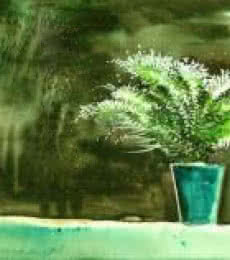 Bay Window Plant | Painting by artist Anil Nene | watercolor | Paper