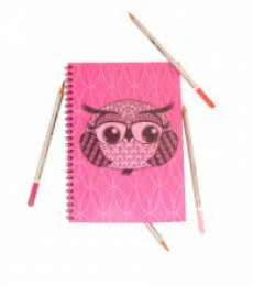 Rithika Kumar | Baby Boo Boo Notebook Craft Craft by artist Rithika Kumar | Indian Handicraft | ArtZolo.com