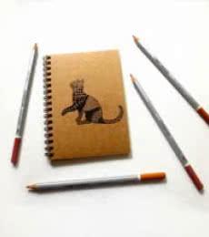 Bela Khaki | Craft by artist Rithika Kumar | Paper