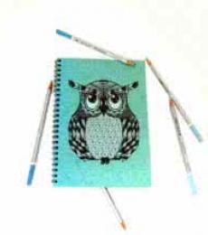 Spikey Notebook | Craft by artist Rithika Kumar | Paper