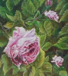 Pink rose | Painting by artist Lasya Upadhyaya | acrylic | Canvas Board