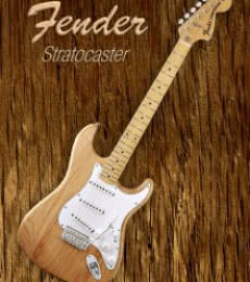 American Fender Stratocaster | Photography by artist Shavit Mason | Art print on Canvas