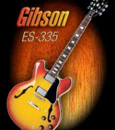 Shavit Mason | Wonderful Gibson ES - 335 Photography Prints by artist Shavit Mason | Photo Prints On Canvas, Paper | ArtZolo.com