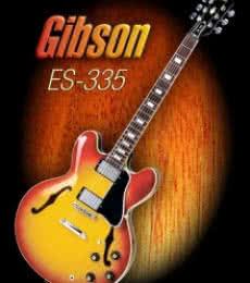 Wonderful Gibson ES - 335 | Photography by artist Shavit Mason | Art print on Canvas