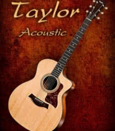 Shavit Mason | Wonderful Taylor Acoustic Guitar Photography Prints by artist Shavit Mason | Photo Prints On Canvas, Paper | ArtZolo.com