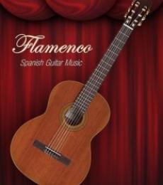 Shavit Mason   Flamenco Spanish Guitar Music Photography Prints by artist Shavit Mason   Photo Prints On Canvas, Paper   ArtZolo.com