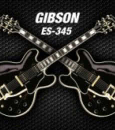 Shavit Mason | Double black gibson - es - 345 Photography Prints by artist Shavit Mason | Photo Prints On Canvas, Paper | ArtZolo.com