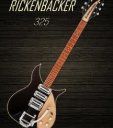 Rickenbacker 325 | Photography by artist Shavit Mason | Art print on Canvas