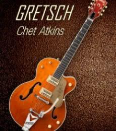Gretsch Chet Atkins | Photography by artist Shavit Mason | Art print on Canvas