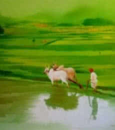 Nature Oil Art Painting title Farmer by artist Narayan Shelke