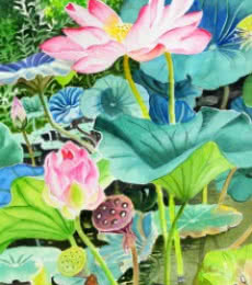 Pink Lotus Long | Painting by artist Vishwajyoti Mohrhoff | watercolor | Campap Paper