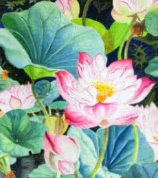 Pink Sahasradal Long   Painting by artist Vishwajyoti Mohrhoff   watercolor   Campap Paper