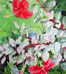 Photorealistic Watercolor Art Painting title Red Hibiscus Variegated by artist Vishwajyoti Mohrhoff