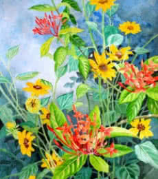 Small Sunflowers And Ixora-coccinea | Painting by artist Vishwajyoti Mohrhoff | watercolor | Campap Paper