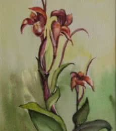 Krupa Shah | Watercolor Painting title Kena Flower on Paper | Artist Krupa Shah Gallery | ArtZolo.com
