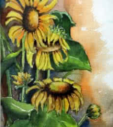Sun Flower I   Painting by artist Krupa Shah   watercolor   paper