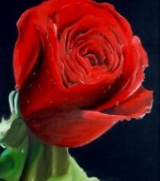 Abarna Kamalesh | Oil Painting title Red Rose on Canvas | Artist Abarna Kamalesh Gallery | ArtZolo.com