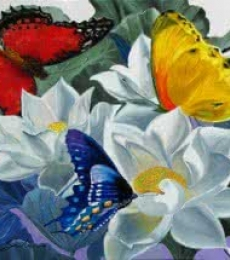 Sulakshana Dharmadhikari | Oil Painting title Flower With Butterfly 1 sold on Canvas | Artist Sulakshana Dharmadhikari Gallery | ArtZolo.com