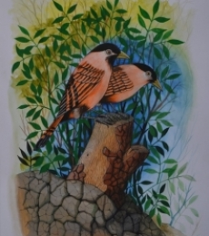 Animals Postercolor Art Painting title 'Birds 73' by artist Santosh Patil
